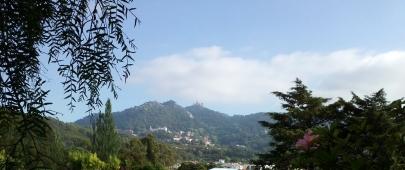 Vista Quinta